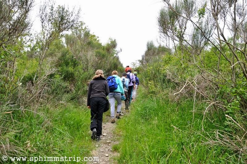 Un sentiero nella Foresta Casentinese - Vallesanta - Arezzo - Toscana - Italia - #welikecasentino